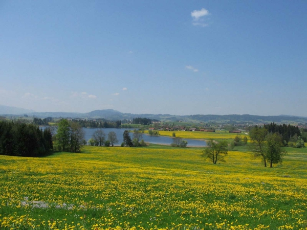 Ausblick der Stottertherapie in Süddeutschland